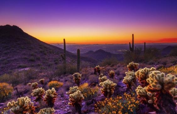 Scottsdale,AZ
